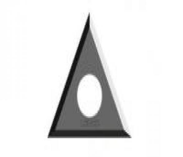 Jeu de 10 plaquettes carbure triangle 22x22x2mm